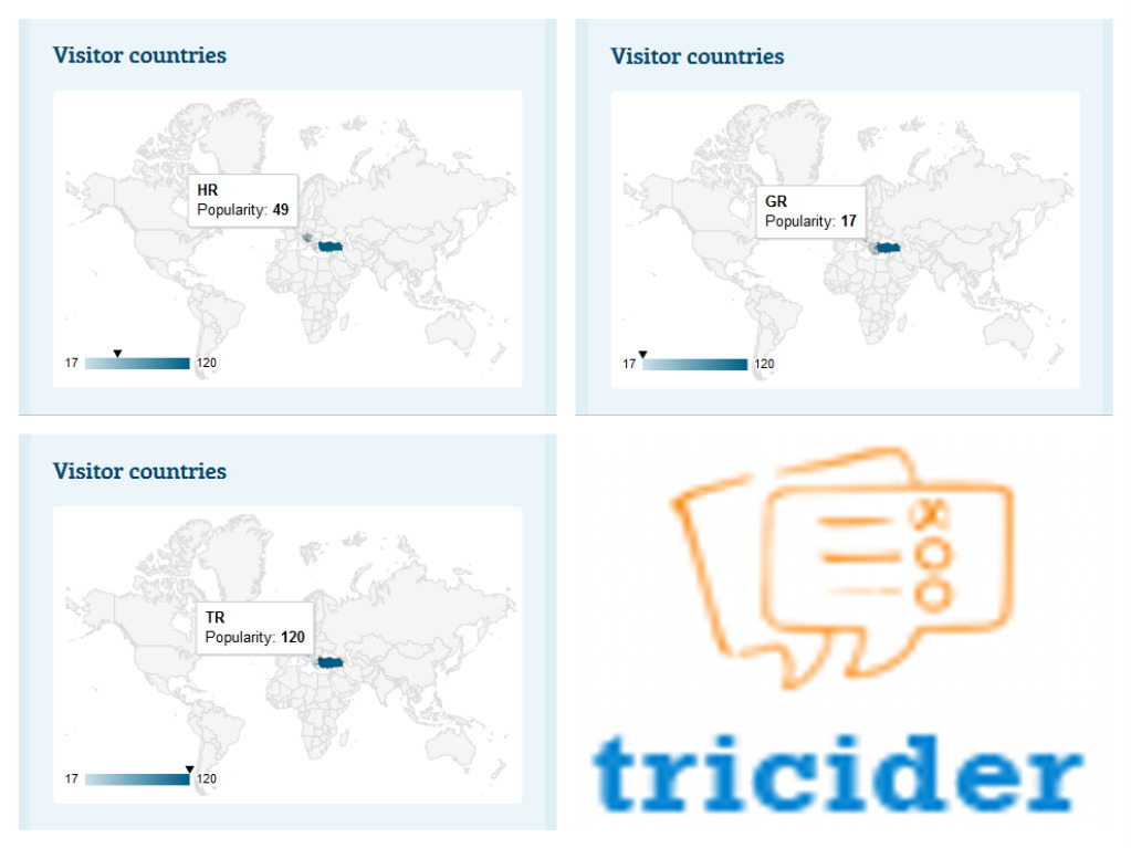 Tricider eTwinning project Digital Citizen - How and Why