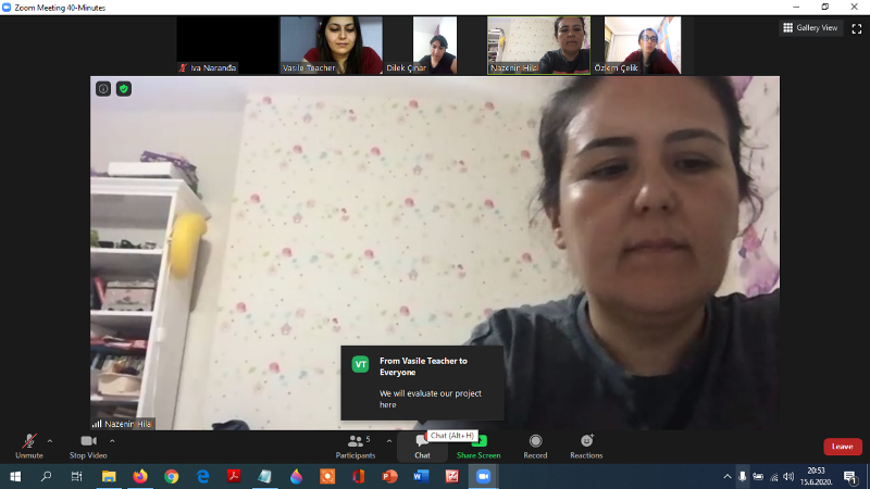 eTwinning project Little Defenders of the Earth online meeting
